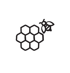 Honeycomb and bee sketch icon vector