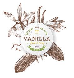 Label with type design and vanilla plant vector