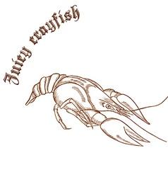 Pencil hand drawn of crayfish with label juicy vector