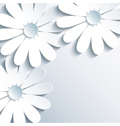 Stylish grey wallpaper with 3d white chamomile vector image