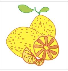 lemons on the white background vector image