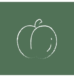 Plum icon drawn in chalk vector image