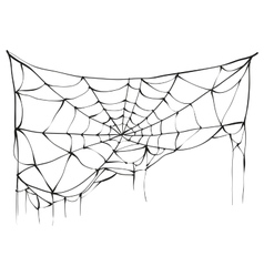Torn spider web on white background vector