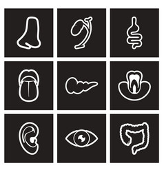 Assembly stylish black and white icons human vector