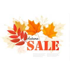 Enjoy Autumn Sales banner with autumn leaves vector image vector image