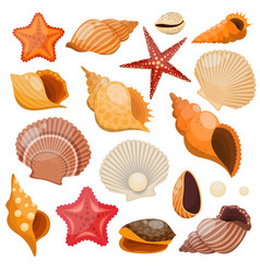 Shells And Sea Stars Icon Set vector image