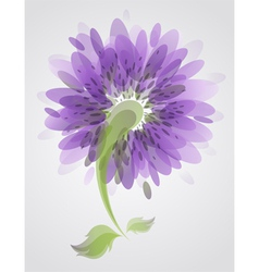Abstract purple flower vector image vector image