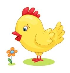 Cute hand drawn chick cock chicken yellow kids vector