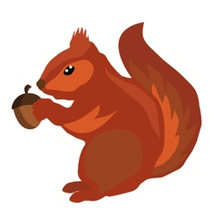 Squirrel icon acorn vector