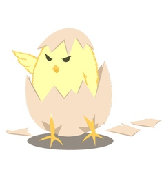 Leader-Chick vector image vector image