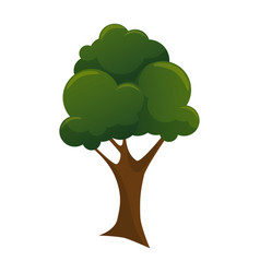 natural tree plant icon vector image