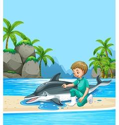 Male vet examining dolpin on the beach vector image