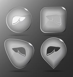 Liver Glass buttons vector image vector image