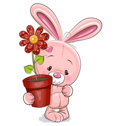 Rabbit with flower vector image vector image
