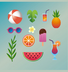 Set summer vacation and tropical activities vector
