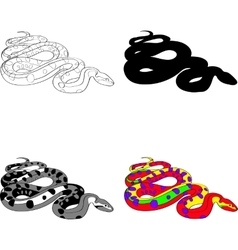 with the image of a snake made vector image