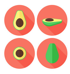 Avocado fruit set in flat style with circles vector