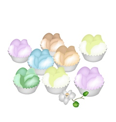 Culorful Thai Steamed Cupcake on White Background vector image vector image