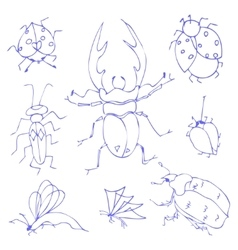 Insects sketch vector image