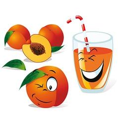 peach tea or juice vector image vector image