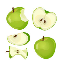 bitten apple whole half and slice isolated on vector image