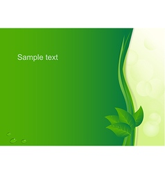 Eco background with drops at leaves vector image
