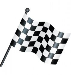 Race flag vector