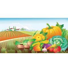 Landscape with a group of vegetables vector