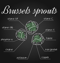 Nutrients list for brussels sprouts on chalkboard vector