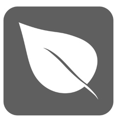 Plant leaf flat squared icon vector