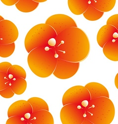 Seamless pattern of beautiful orange flowers vector image vector image