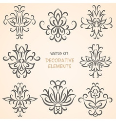 Decorative floral elements set vector image vector image