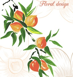Peach design card vector