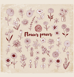set of doodle sketch flowers on vintage background vector image