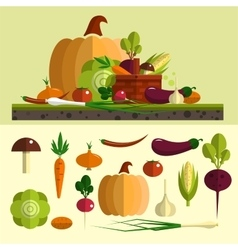Vegetables icons set in flat style vector image vector image