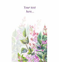 Purple lilac on a white background watercolor vector