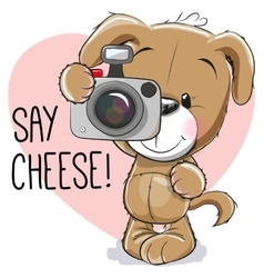 Puppy with a camera vector