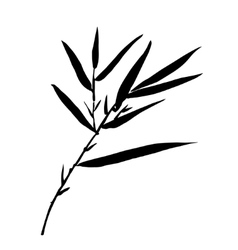 Bamboo leaf background The top of the bamboo vector image