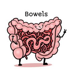 Funny human gut bowel intestines character vector