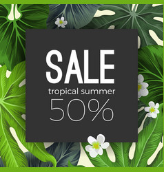 Special summer sale card with exotic plants on vector