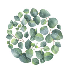 Watercolor card with green eucalyptus vector