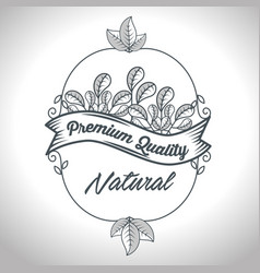 Seal natural product guaranteed vector