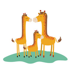 Cartoon giraffes couple with calf over grass in vector