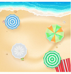 Summer background banner with seashore colored vector