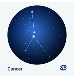 Cancer constellation ight s vector
