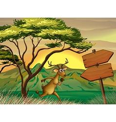 A deer following the wooden arrowboard vector image