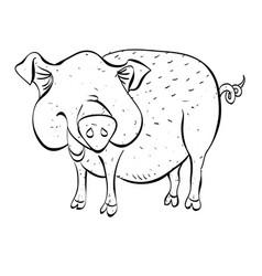Cartoon image of pig vector