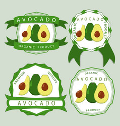 the green avocado vector image