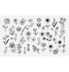 Set of doodle sketch flowers vector