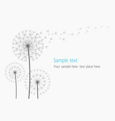 dandelion blowing silhouette vector image